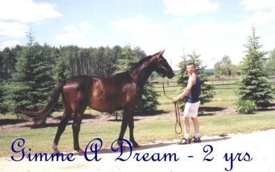 gimme-a-dream-5